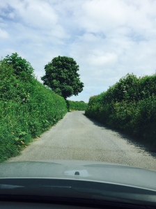 A country road in Somerset, England