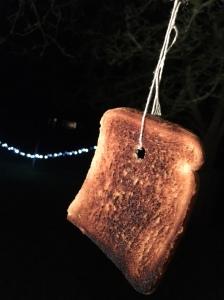 Wassailing Toast